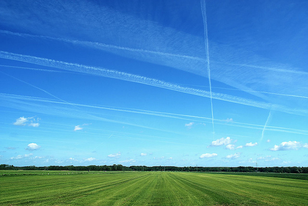 Image of a green field under blue sky